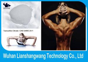 Safe Oral / Injectable Tamoxifen Citrate 10540-29-1 /Nolvadex Anti Estrogen Steroids pictures & photos