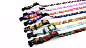 New Style Transfer Printing Cat Dog Collars, Leashes Separately Matching (KC0097) pictures & photos
