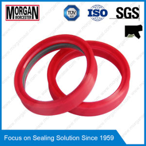 PTFE/FKM/PU/ NBR/POM/PA Material Hydraulic Cylinder Seal pictures & photos