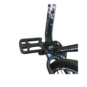 Good Design Bicycle Pedal (FPD-037) pictures & photos