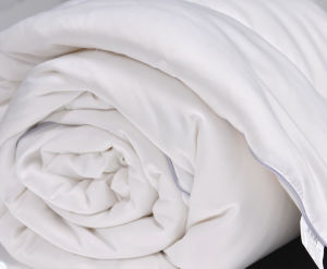 Good Breathable 40s Cotton Mulberry Long Silk Comforter pictures & photos