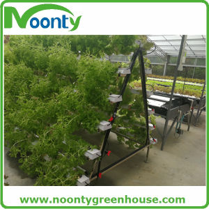 Chinese a-Rack Nft Hydroponics System pictures & photos