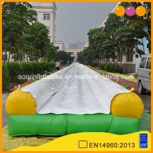 Slip N Slide Straight Inflatable Long Water Slide (AQ10118-1) pictures & photos