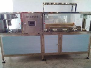 20L Barrel Bucket Filling Machine for 5gallon pictures & photos