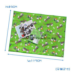 Eco-Friendly Cmyk Printing PP PE Woven Beach Mat pictures & photos