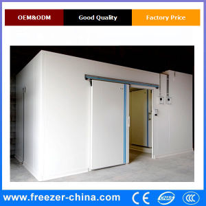 China Quickly Freezing Combination Blast Freezer Cold Storage Room pictures & photos