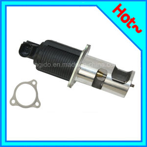 Car Parts Egr Valve for Renault 8200374875 pictures & photos