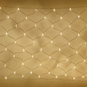 Decorative Rope Light LED Net Light pictures & photos