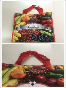 Eco-Friendly PP Non Woven Lamination Tote Bag, Colorful Shopping Bags pictures & photos