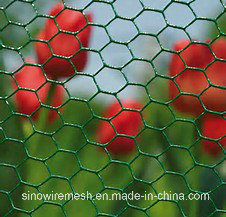 Sailin Hexagonal Wire Netting Mesh Fence pictures & photos