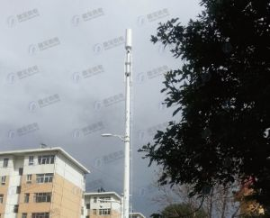 Customized Multifunctional Steel Structure Green Belt Telecom Station pictures & photos