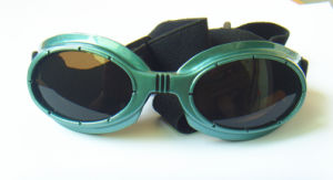 Pet Green Promotion Sunglasses pictures & photos