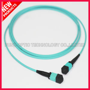 40Gig 12 Fibers High Density MTP OM3 Cable pictures & photos