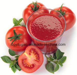 Tomato Paste Ketchup Sauce Jam Mayonese Packing Machine pictures & photos