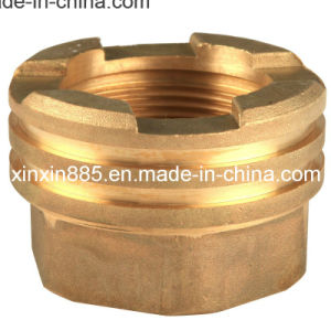 Brass Insert for PPR Pipe (XX-ITF203) pictures & photos