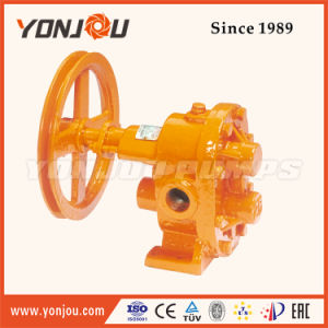 Bp Portable Stainless Steel Belt Pulley Gear Pump pictures & photos
