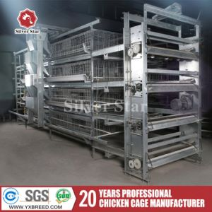 Silver Star Cheap Price Poultry Automatic Equipment Chicken Layer Cage pictures & photos