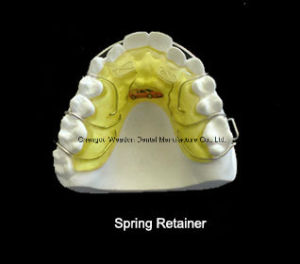 Spring Retainer Orthodontic pictures & photos