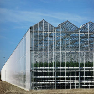 Tempered Ultra Clear Low Iron Textured Diffuse Greenhouse Glass pictures & photos