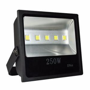IP65 Super Bright LED Outdoor Light, 200W LED Floodlight (100W-$15.83/120W-$17.23/150W-$24.01/160W-$25.54/200W-$33.92/250W-$44.53) 2-Year Warranty pictures & photos