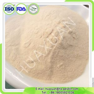 Type 2 Chicken Cartilage Collagen Powder for Joints pictures & photos