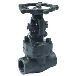 High Quality of Y-Type Forged Steel Body Gate Valve