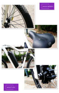 Alumium Frame Electric Bike with 36V 350W Hub Motor pictures & photos