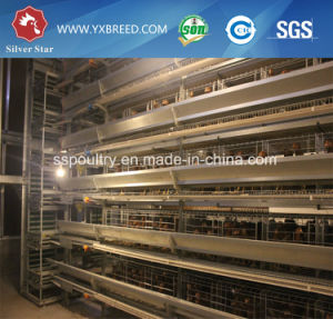 Poultry Farm Equipment Layer Chicken Battery Cage Systems pictures & photos