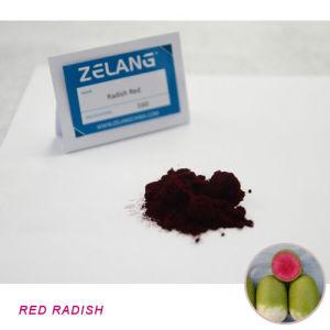 Red Colorant Powder Red Radish