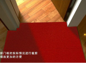 Lobby Use Foot Cleant Mat Entrance Door Mat Floor Carpet Mat pictures & photos