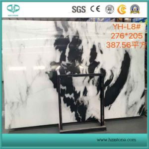 Book Matched Panda White Marble Slab for Countertop, White & Black Marble for Flooring and Wall pictures & photos