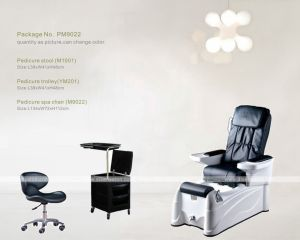 Pedicure Foot SPA Chair (M9022) pictures & photos