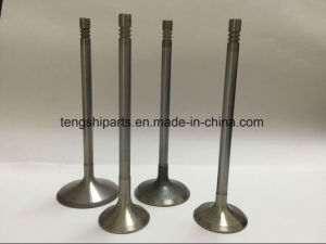 Inlet Valve/Exhaust Valve for Benz pictures & photos