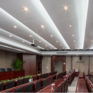 Aluminum Interior Customized Ceiling with Fashion Design for Building Decoration pictures & photos