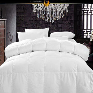 Royal Hotel′s Queen Size Light Down Comforter (DPF10345) pictures & photos
