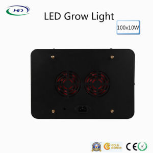 100PCS*10W Black Housing LED Grow Light for Commercial Plants pictures & photos