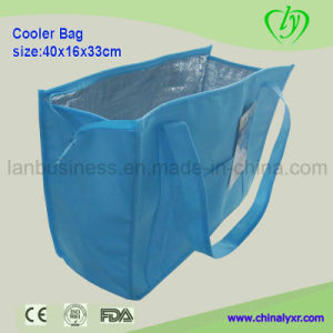 Ly Outdoor Non-Woven Cooler Bag pictures & photos