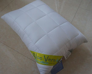 New Natural Fiber Alo Vera Pillow Made in China pictures & photos