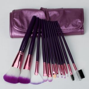12PCS Makeup Tool Nylon Hair Makeup Cosmetic Brush Set pictures & photos
