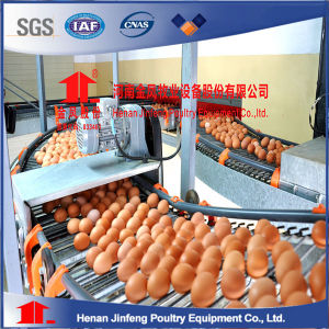 Multi-Tiers Layer Chicken Cages for Poultry Farm pictures & photos