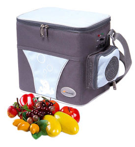 Thermoelectric Cooler and Warmer 6 Liter DC12V for Cooling and Warming pictures & photos