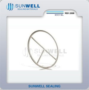Double Jacket Gaskets Jacket and Filler Materials pictures & photos