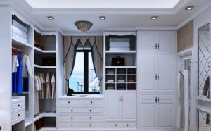 Living Room Closets Cabinets pictures & photos