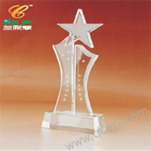 True Star Award - Acrylic Awards - Custom Awards pictures & photos