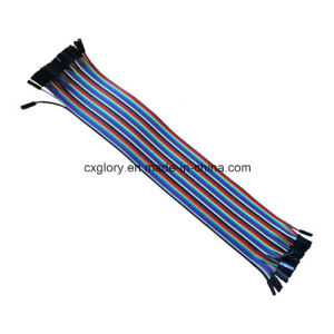 40 Pins Female to Female 2.54mm Pitch Ribbon Cable pictures & photos