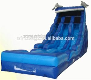 Used Big Water Slides for Sale / Double Lane Water Slides Prices pictures & photos