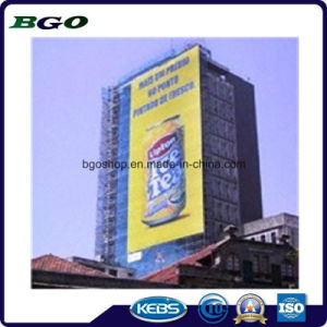 PVC Mesh Banner Mesh Fabric Canvas Fence (1000X1000 9X9 270g) pictures & photos
