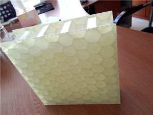 25mm Fiberglass PP Honeycomb Panels pictures & photos