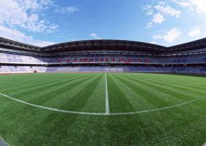 Artificial Grass of Monofilament for Football/Soccer Field/Stadium