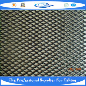 PE Knotless Fish Net (PB080679) for SGS pictures & photos